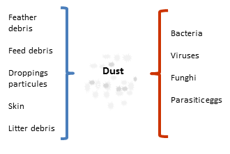 dust composition feed debris droppings funghi parasitic eggs bacteria in poultry houses
